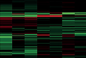 Figure 1. Protein cluster map demonstrating differential protein expression